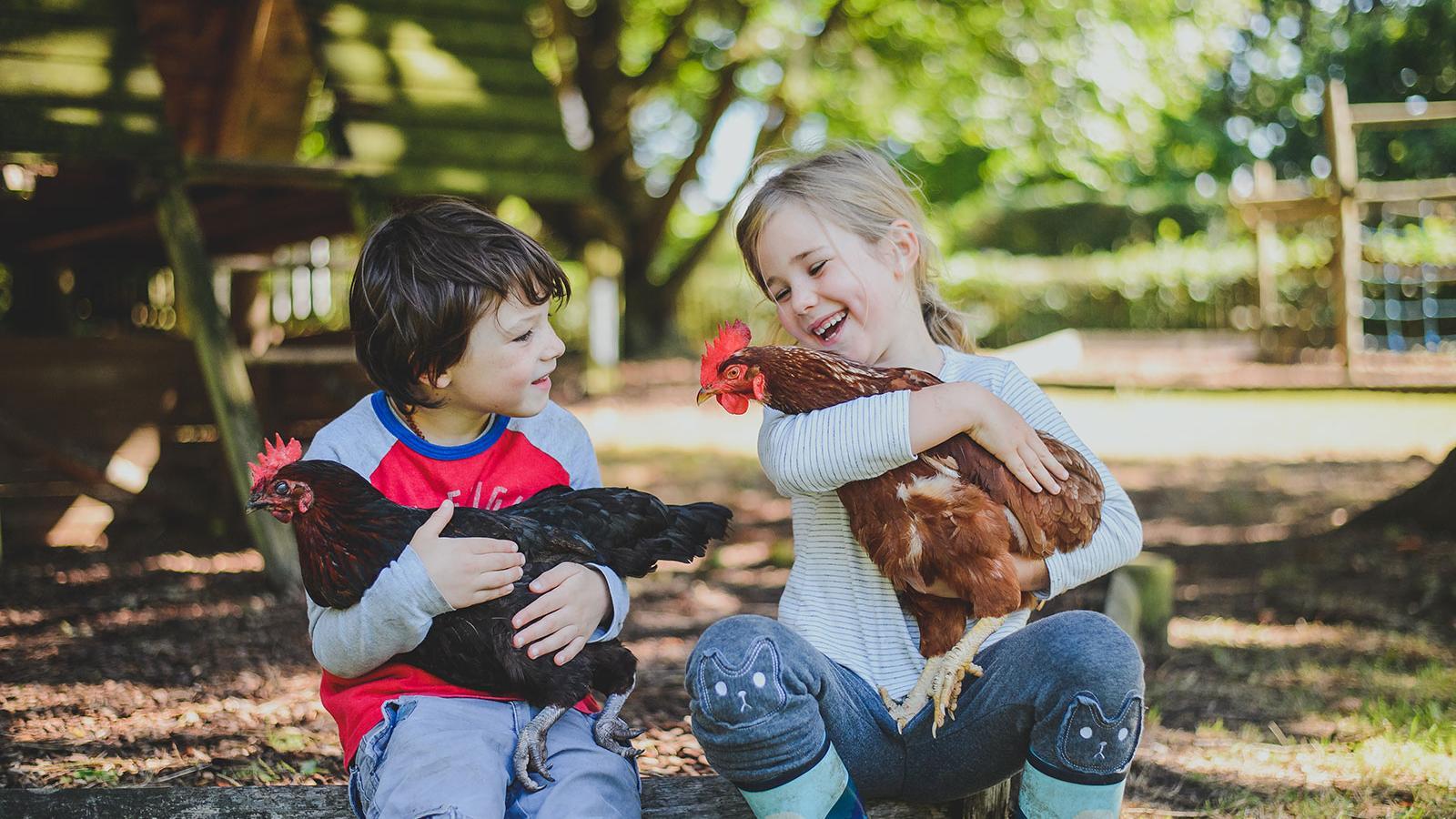 Dunannie children holding chickens outdoors
