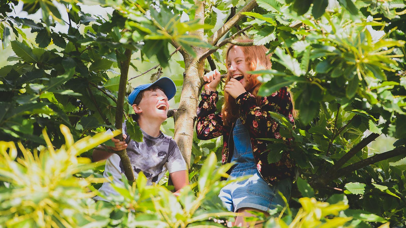 Dunhurst pupils tree climbing